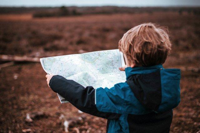 ciekawość i nauka